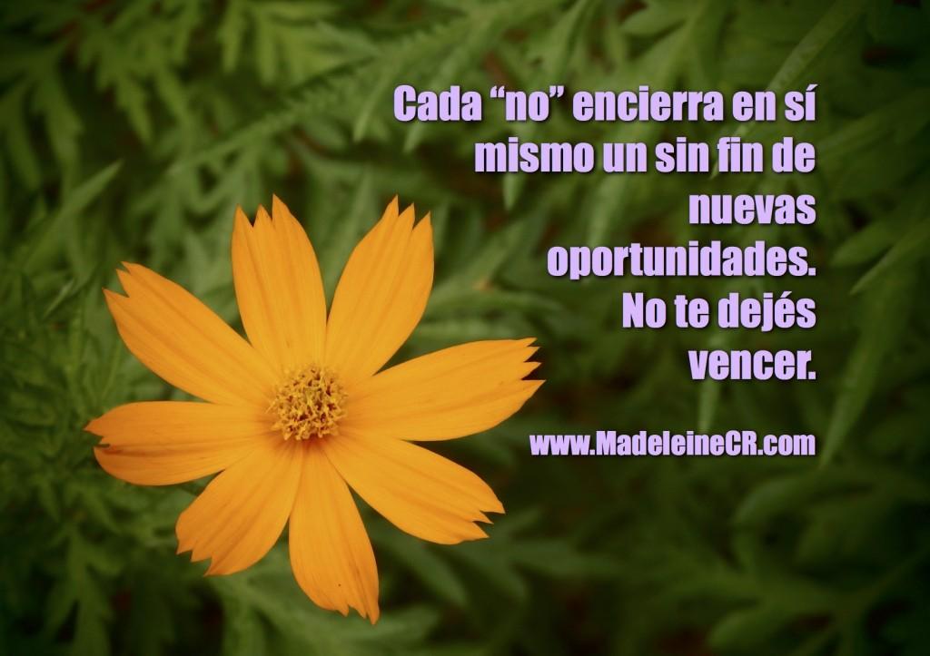 """Cada """"no"""" encierra en sí mismo un sin fin de nuevas  oportunidades."""