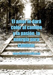El amor le dará color al camino y la pasión, la energía para caminar