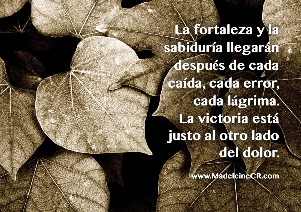 La fortaleza y la sabiduría llegarán después de cada caída, cada error, cada lágrima
