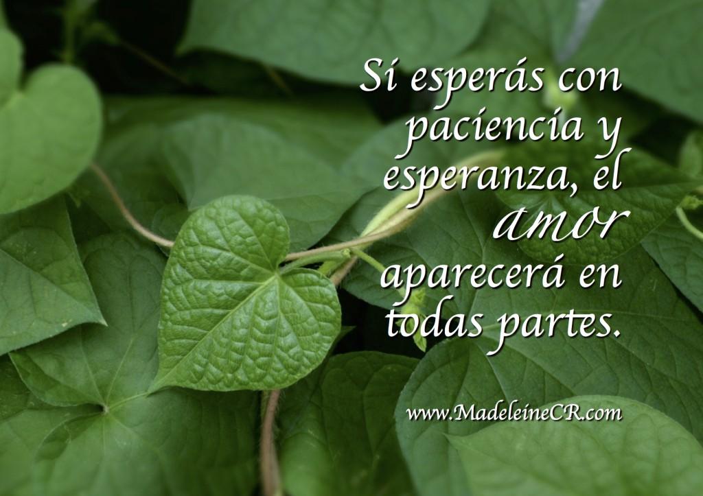 Si esperás con paciencia y esperanza, el amor aparecerá en todas partes